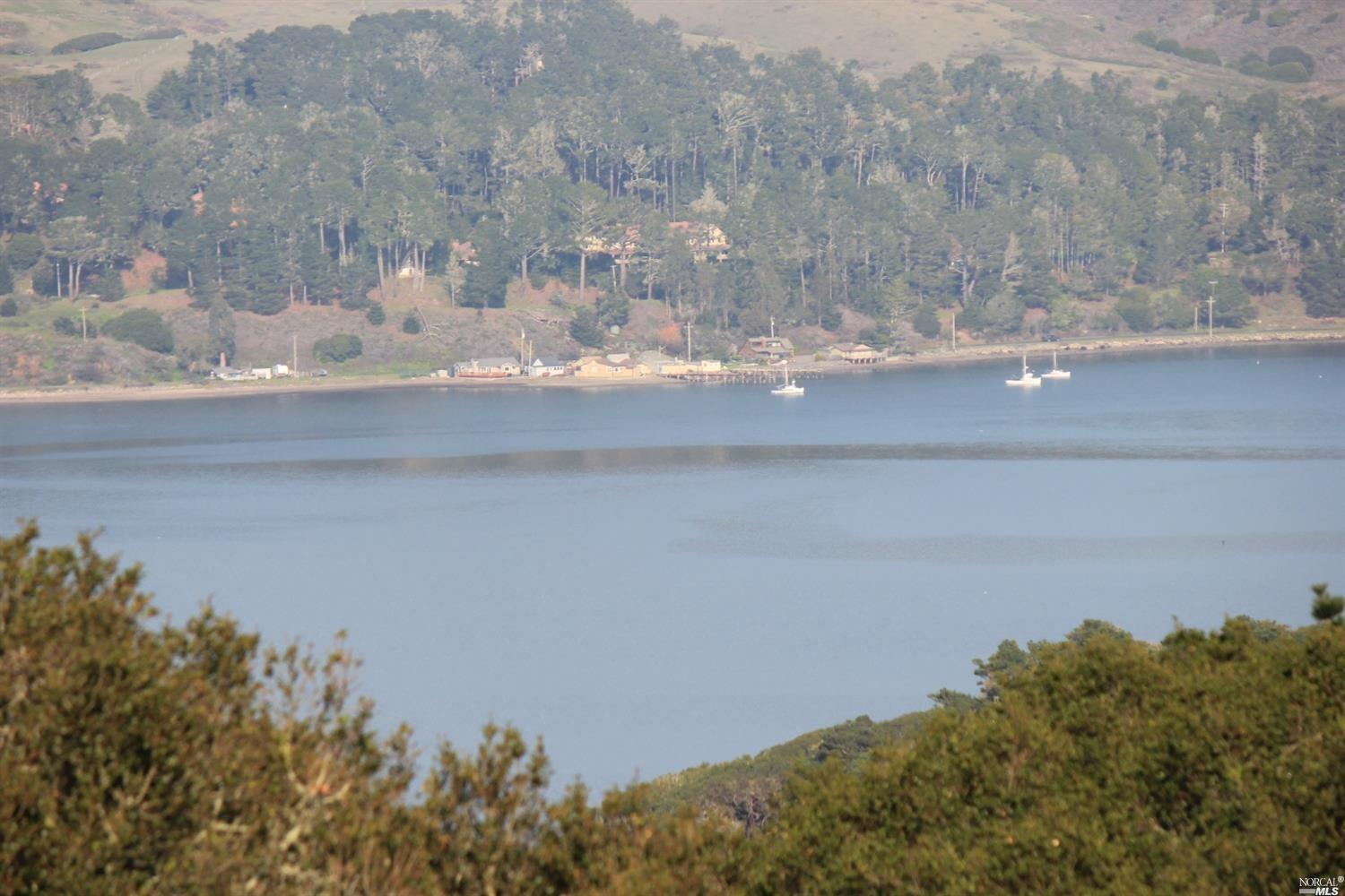 Listing 321008957 : 1208  Pierce Point Road, Inverness, CA, 94937  (photo 20)