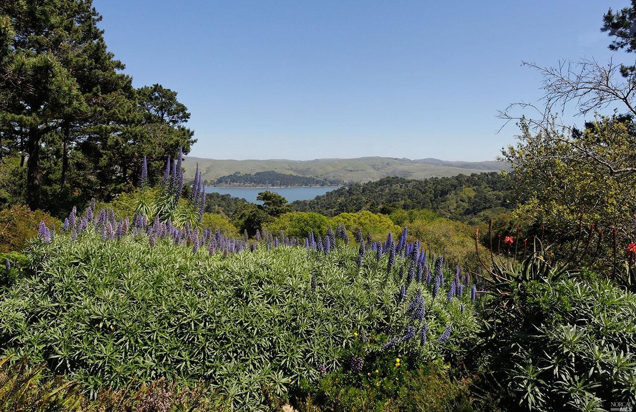 Listing 321008957 : 1208  Pierce Point Road, Inverness, CA, 94937  (photo 16)
