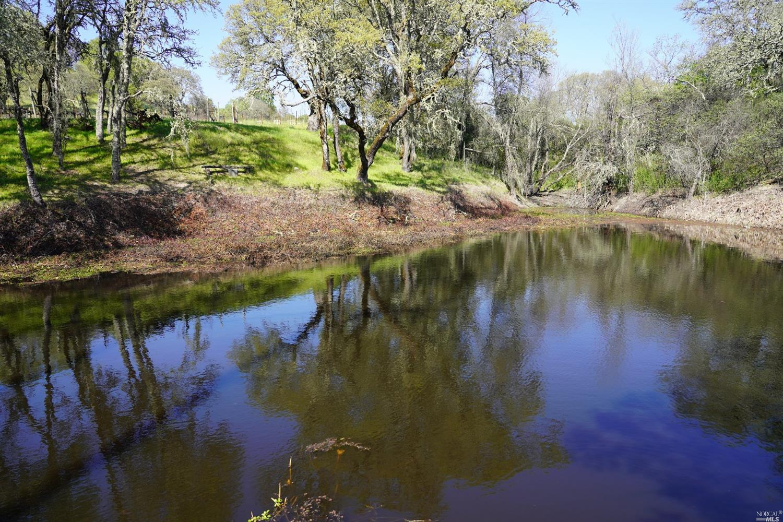 Listing 321019261 : 14849  Chalk Hill Road, Healdsburg, CA, 95448  (photo 90)
