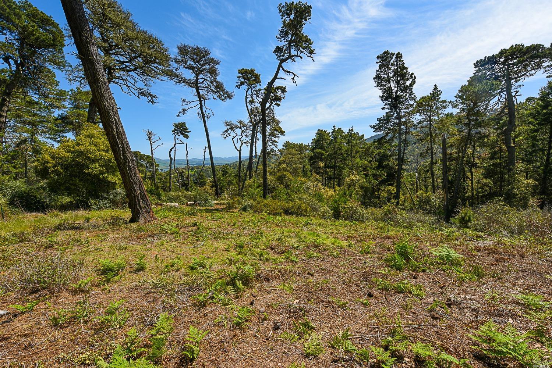 Listing 321025716 : 531  Via de la Vista , Inverness, CA, 94937  (photo 8)