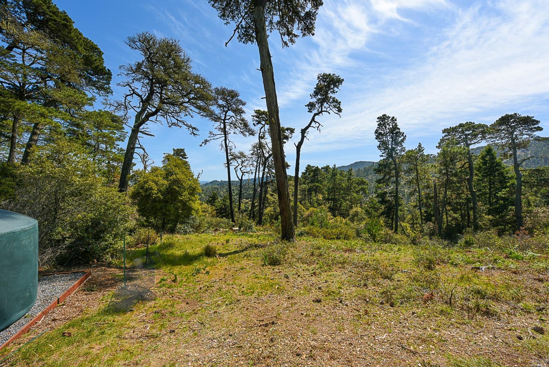 Listing 321025716 : 531  Via de la Vista , Inverness, CA, 94937  (photo 7)