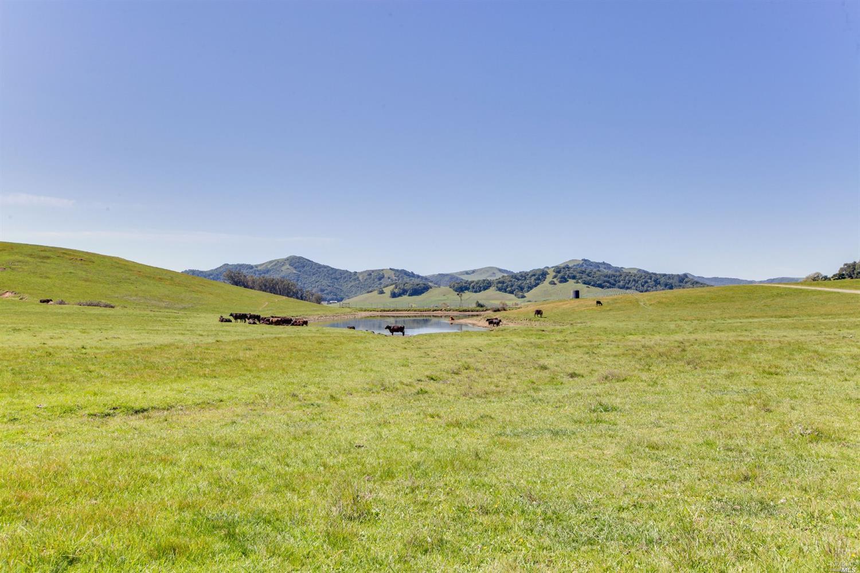 Listing 321029882 : 2730  Spring Hill Road, Petaluma, CA, 94952  (photo 21)