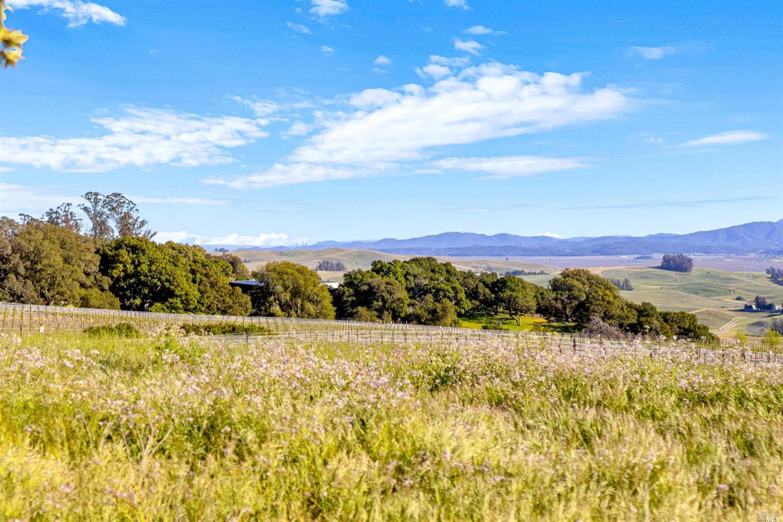 Listing 321032642 : 4014  Manor Lane , Petaluma, CA, 94952  (photo 5)