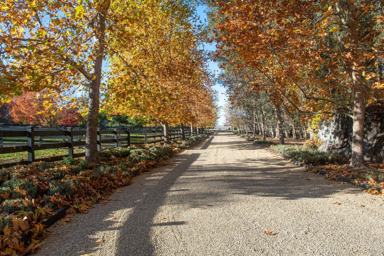 Listing 321033156 : 105  Purvine Road, Petaluma, CA, 94952  (photo 21)