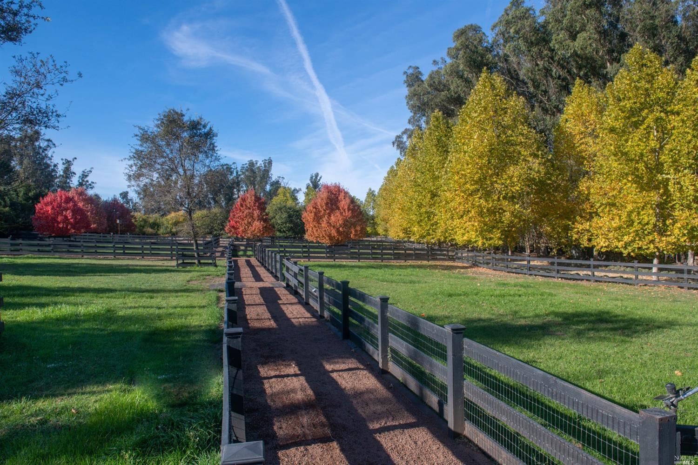 Listing 321033156 : 105  Purvine Road, Petaluma, CA, 94952  (photo 76)
