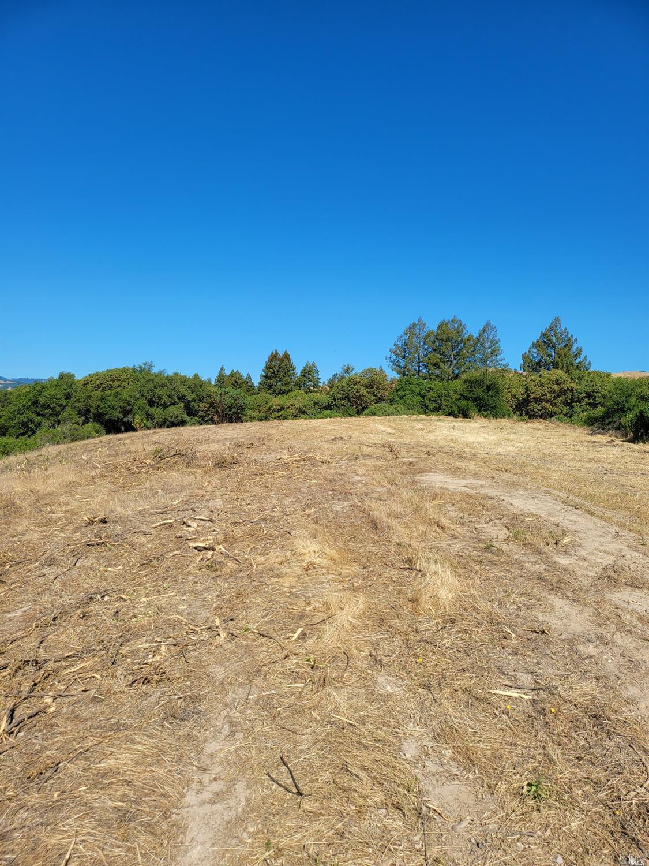 Listing 21926867 : 9695  Dry Creek Road, Healdsburg, CA, 95448  (photo 16)