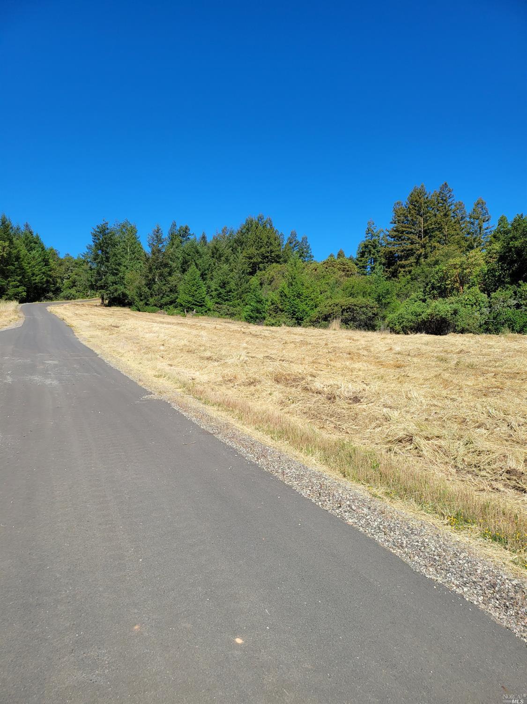 Listing 21926867 : 9695  Dry Creek Road, Healdsburg, CA, 95448  (photo 12)