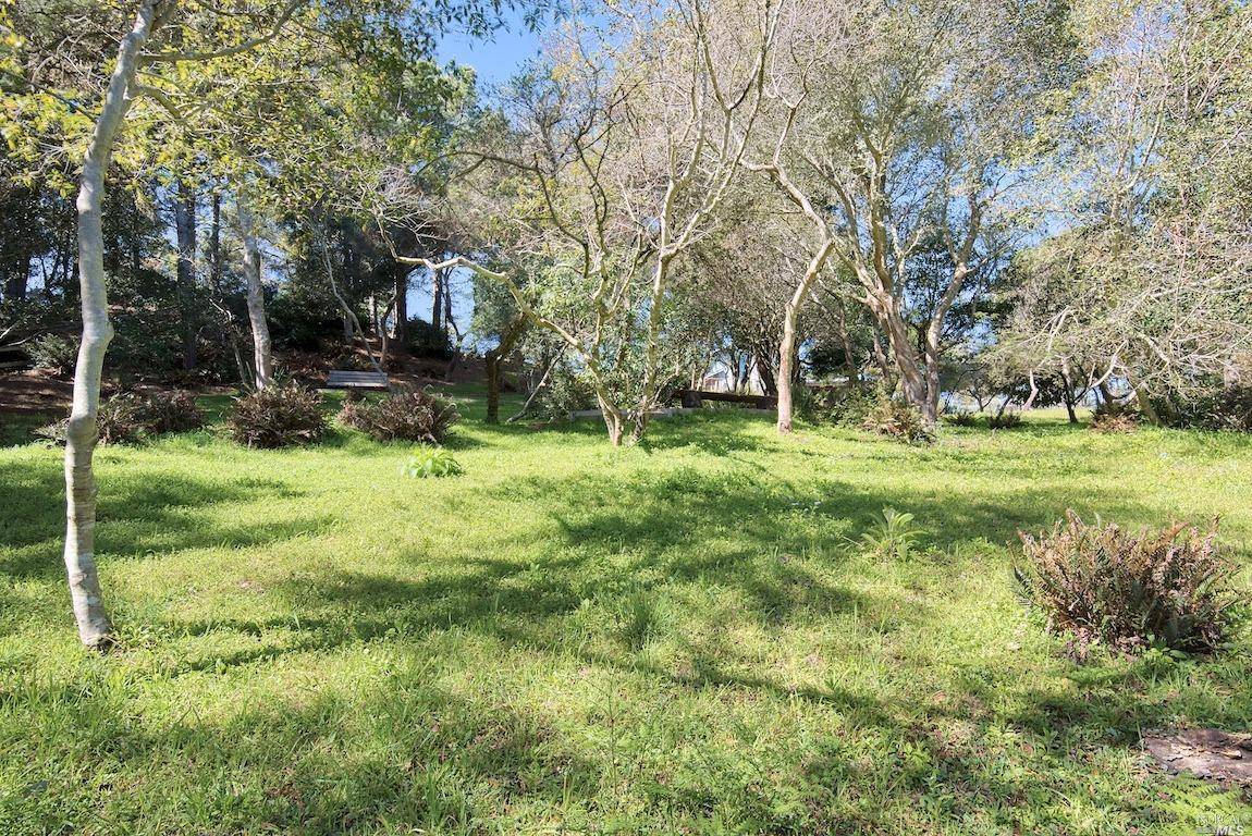 Listing 321035528 : 415  Drakes View Drive, Inverness, CA, 94937  (photo 36)