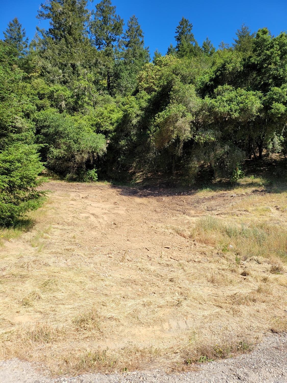 Listing 21926867 : 9695  Dry Creek Road, Healdsburg, CA, 95448  (photo 9)