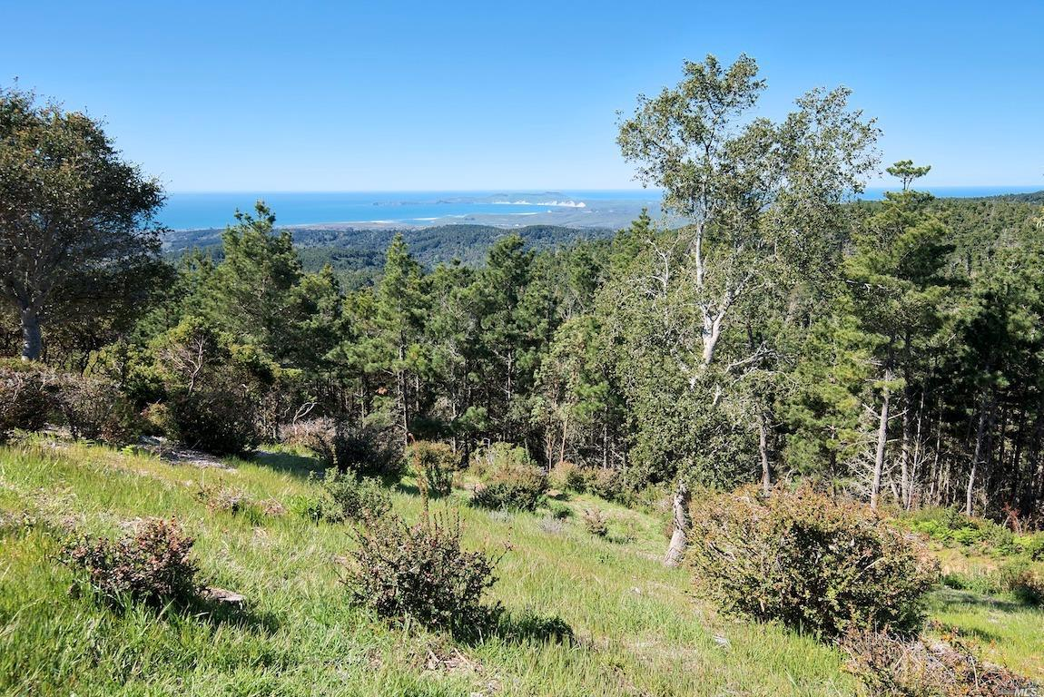 Listing 321035528 : 415  Drakes View Drive, Inverness, CA, 94937  (photo 41)