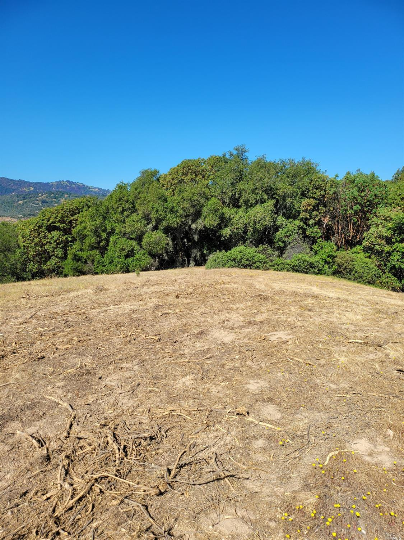 Listing 21926867 : 9695  Dry Creek Road, Healdsburg, CA, 95448  (photo 17)