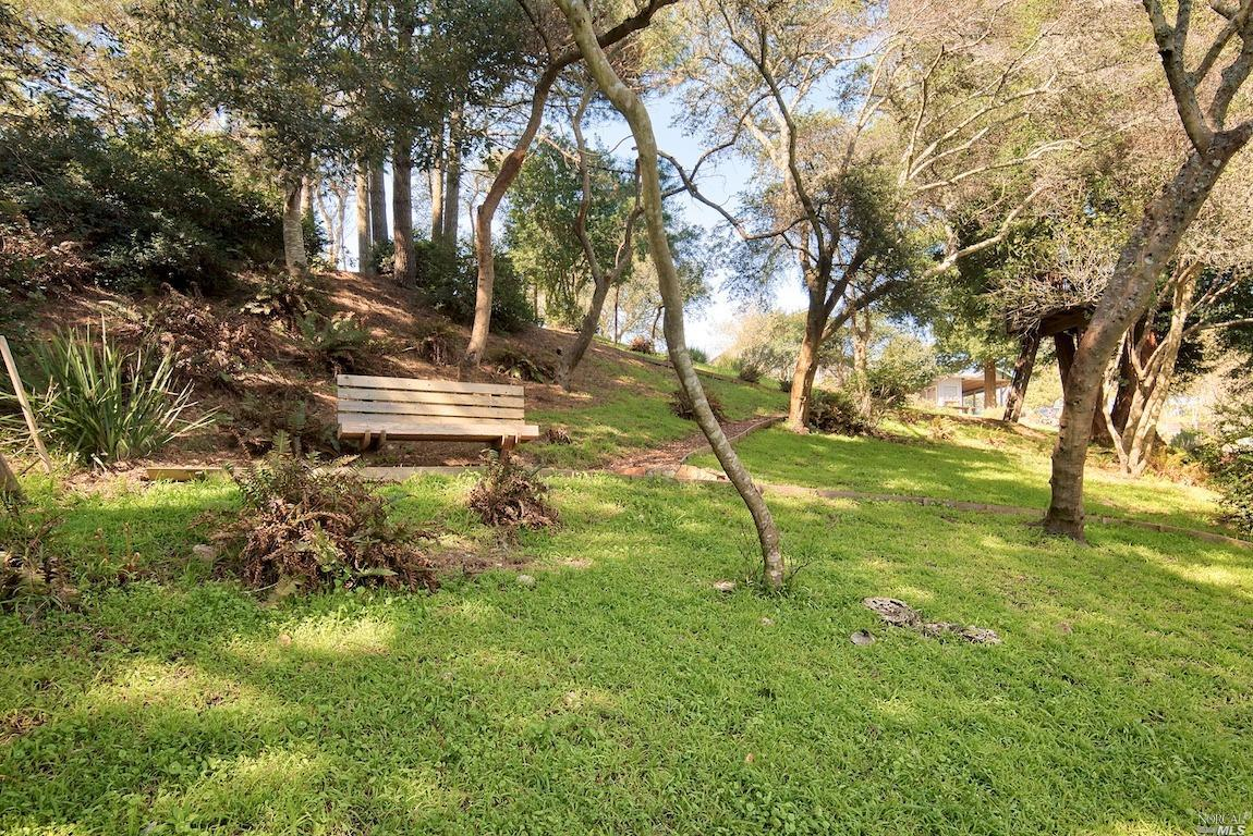 Listing 321035528 : 415  Drakes View Drive, Inverness, CA, 94937  (photo 35)