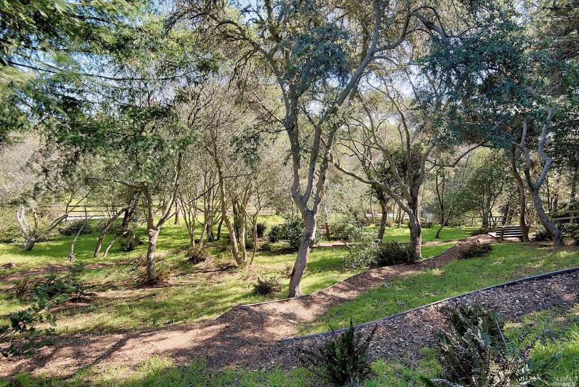 Listing 321035528 : 415  Drakes View Drive, Inverness, CA, 94937  (photo 34)