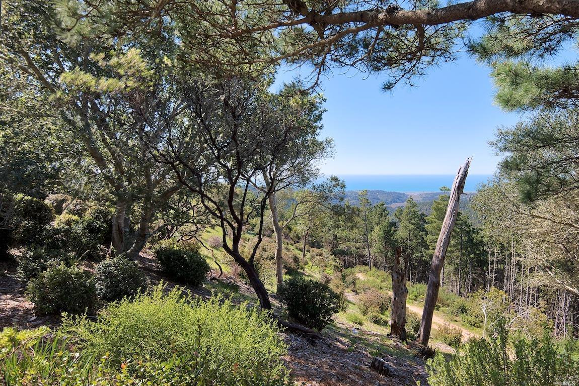 Listing 321035528 : 415  Drakes View Drive, Inverness, CA, 94937  (photo 42)