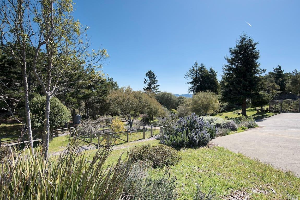 Listing 321035528 : 415  Drakes View Drive, Inverness, CA, 94937  (photo 40)