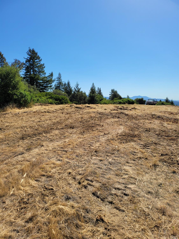 Listing 21926867 : 9695  Dry Creek Road, Healdsburg, CA, 95448  (photo 8)