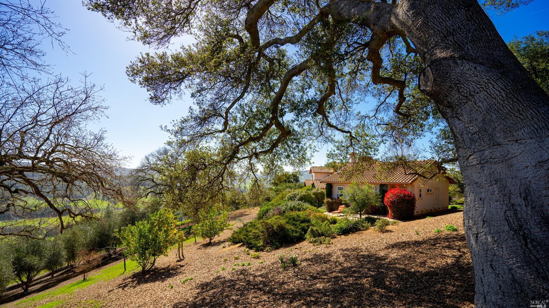 Listing 321039604 : 1500  Longhorn Lane, Petaluma, CA, 94952  (photo 42)