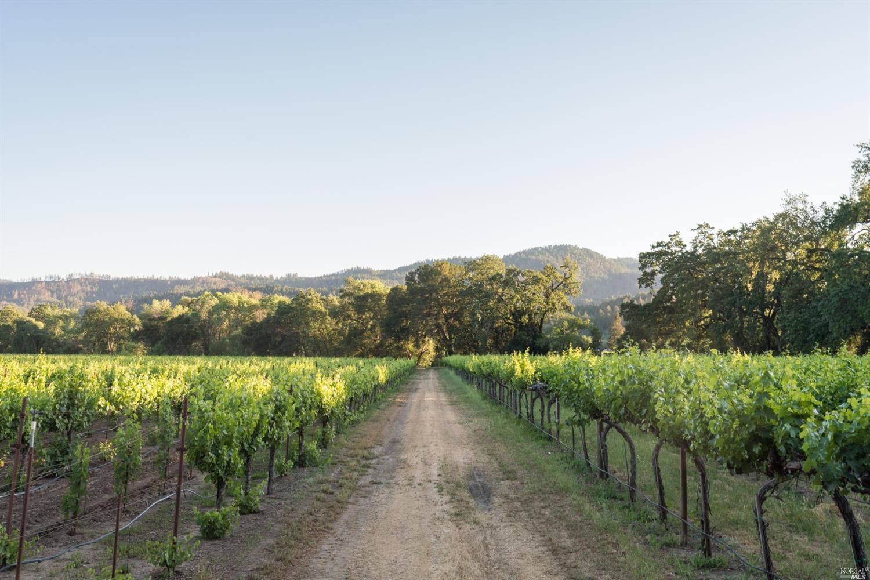 Listing 321043585 : 3761  Silverado Trail, Calistoga, CA, 94515  (photo 34)