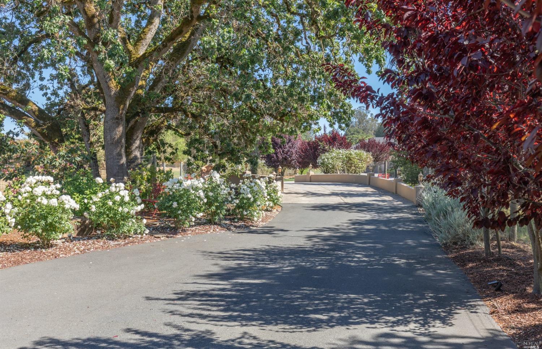 Listing 321049250 : 701  Penngrove Avenue, Penngrove, CA, 94951  (photo 4)