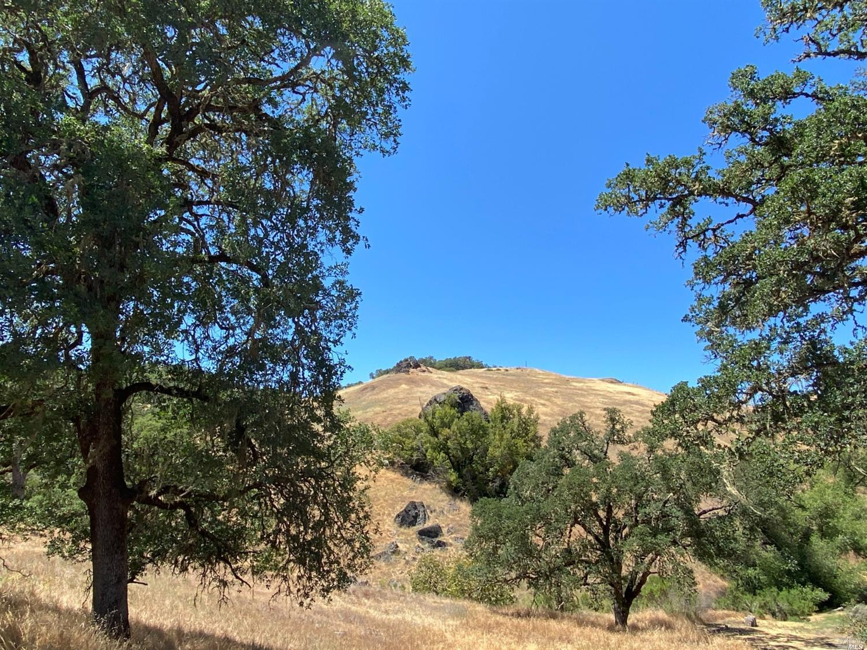 Listing 321046135 : 7400  E Side Potter Valley Road , Ukiah, CA, 95482  (photo 30)
