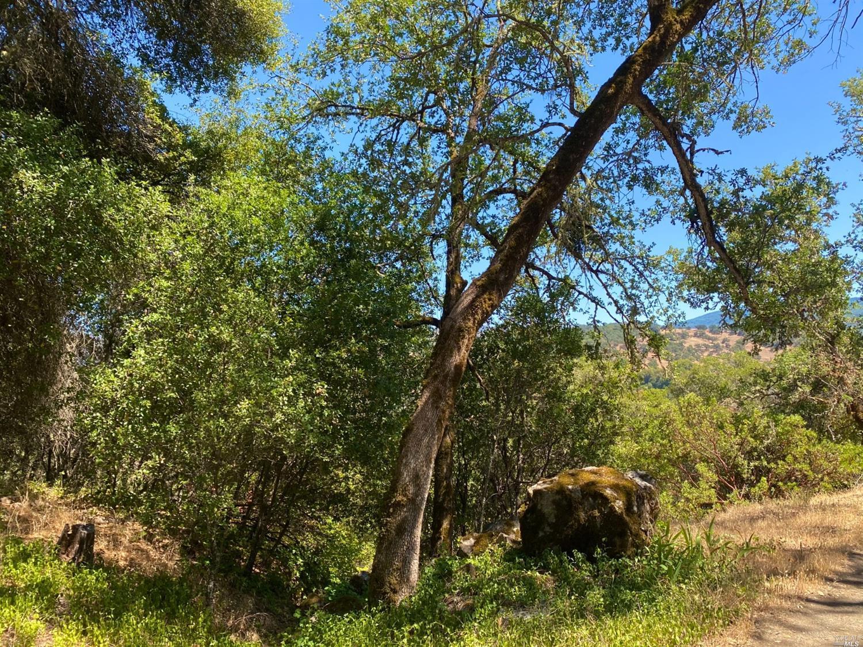 Listing 321046135 : 7400  E Side Potter Valley Road , Ukiah, CA, 95482  (photo 28)