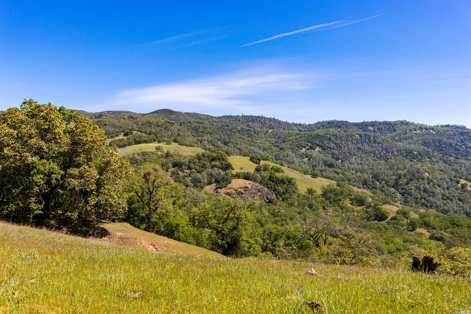 Listing 321059198 : 34333  Pine Mountain Road, Cloverdale, CA, 95425  (photo 18)