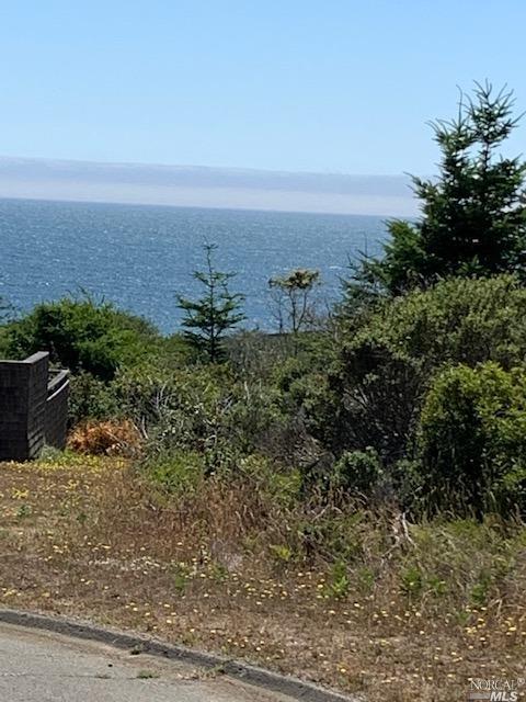 Listing 321060132 : 38240  Green Vale Close , The Sea Ranch, CA, 95497  (photo 1)