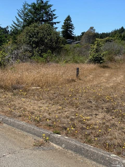 Listing 321060132 : 38240  Green Vale Close , The Sea Ranch, CA, 95497  (photo 4)