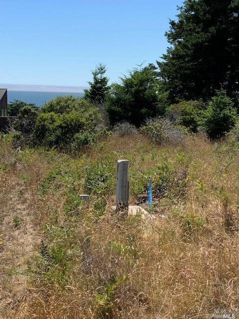 Listing 321060132 : 38240  Green Vale Close , The Sea Ranch, CA, 95497  (photo 6)