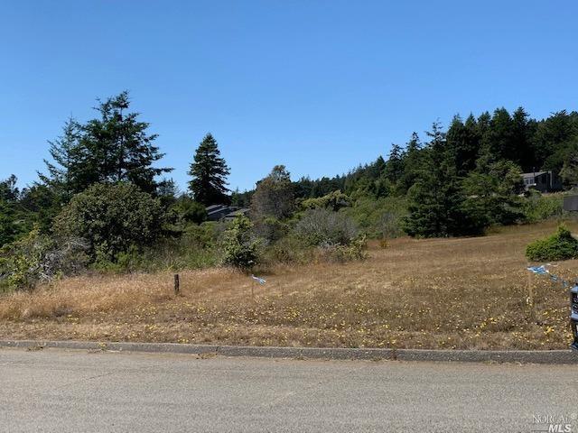 Listing 321060132 : 38240  Green Vale Close , The Sea Ranch, CA, 95497  (photo 2)