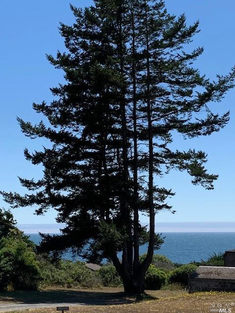 Listing 321060132 : 38240  Green Vale Close , The Sea Ranch, CA, 95497  (photo 3)