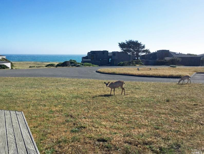 Listing 321060334 : 387  Grey Whale , The Sea Ranch, CA, 95497  (photo 20)