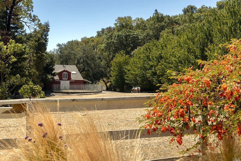 Listing 321046478 : 18730  Canyon Road, Sonoma, CA, 95476  (photo 29)