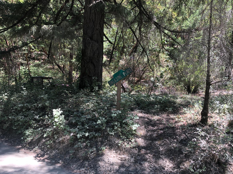 0 Woodman Creek Road, Laytonville, CA 95454