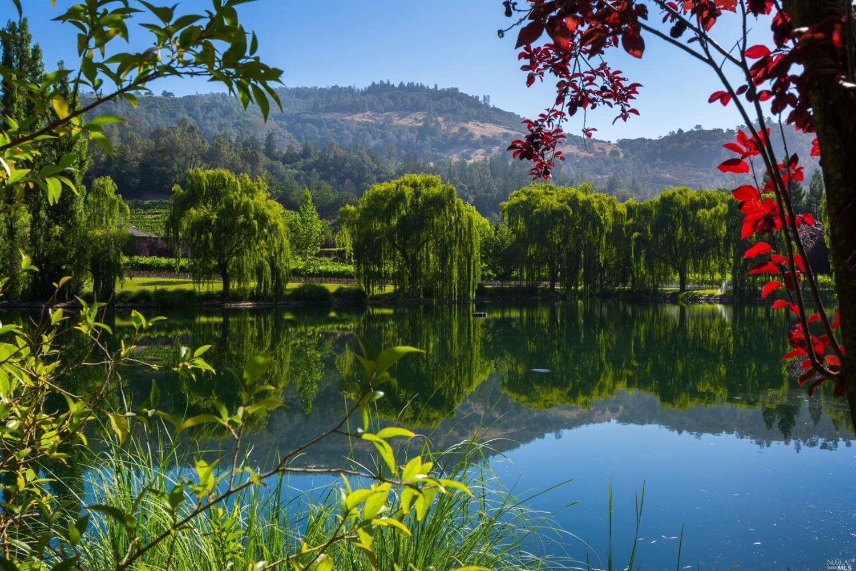 Photo of Calistoga, CA 94515