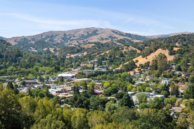 Listing 321066404 : 233  Hillside Drive, Fairfax, CA, 94930  (photo 95)