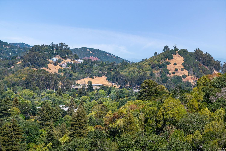 Listing 321066404 : 233  Hillside Drive, Fairfax, CA, 94930  (photo 96)