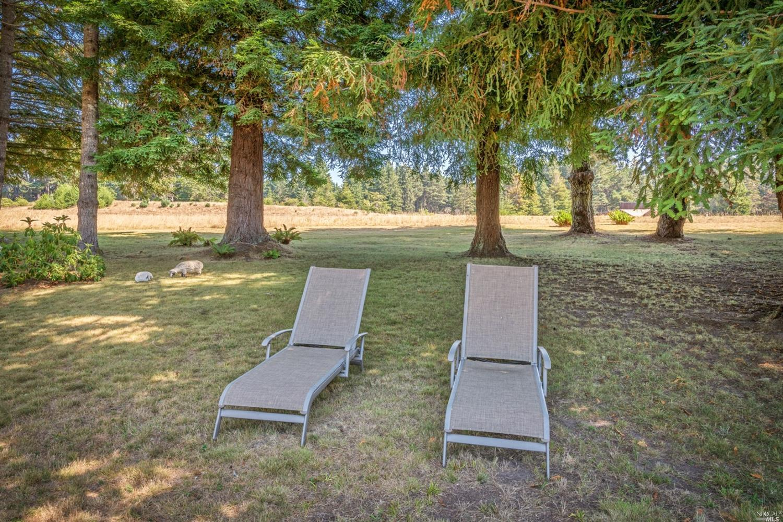 Listing 321083213 : 35929  Sea Ridge Road, The Sea Ranch, CA, 95497  (photo 31)