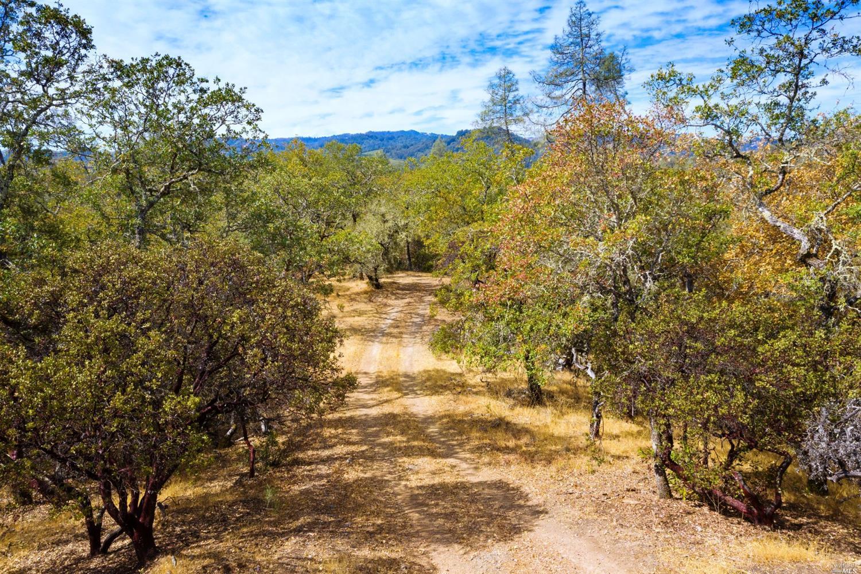 Listing 321087917 : 23700  Dutcher Creek Road, Cloverdale, CA, 95425  (photo 31)
