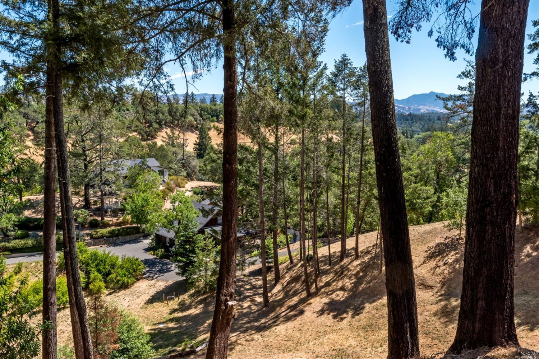 Listing 321088551 : 1610  Brack Road, Healdsburg, CA, 95448  (photo 46)