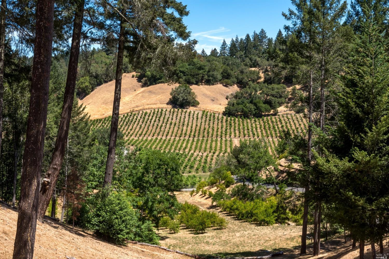 Listing 321088551 : 1610  Brack Road, Healdsburg, CA, 95448  (photo 4)