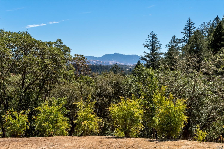 Listing 321088551 : 1610  Brack Road, Healdsburg, CA, 95448  (photo 63)