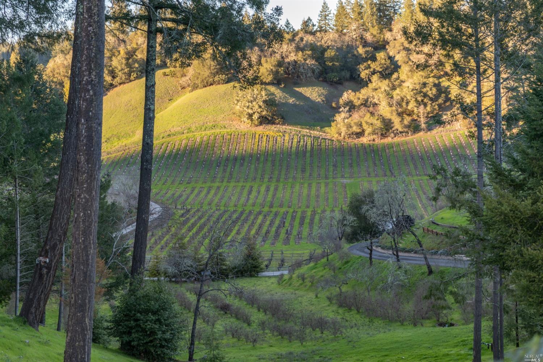 Listing 321088551 : 1610  Brack Road, Healdsburg, CA, 95448  (photo 61)