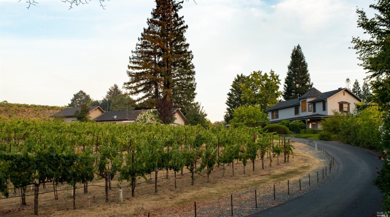 Listing 321089337 : 3875  W Dry Creek Road, Healdsburg, CA, 95448  (photo 17)