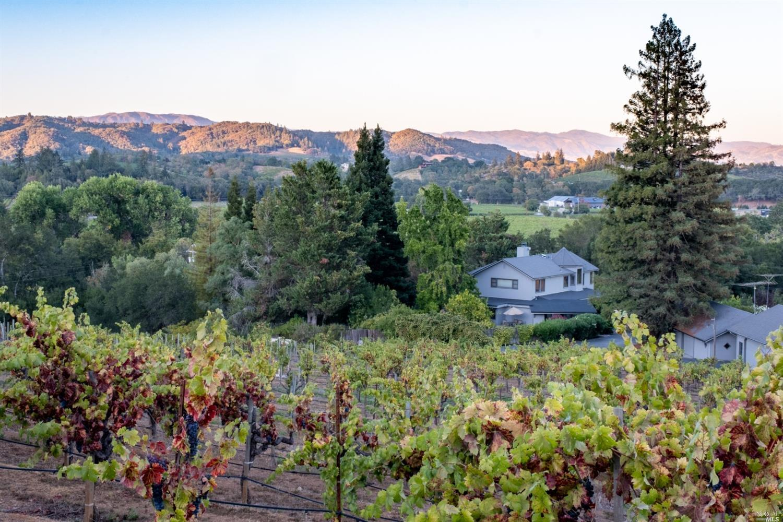 Listing 321089337 : 3875  W Dry Creek Road, Healdsburg, CA, 95448  (photo 16)