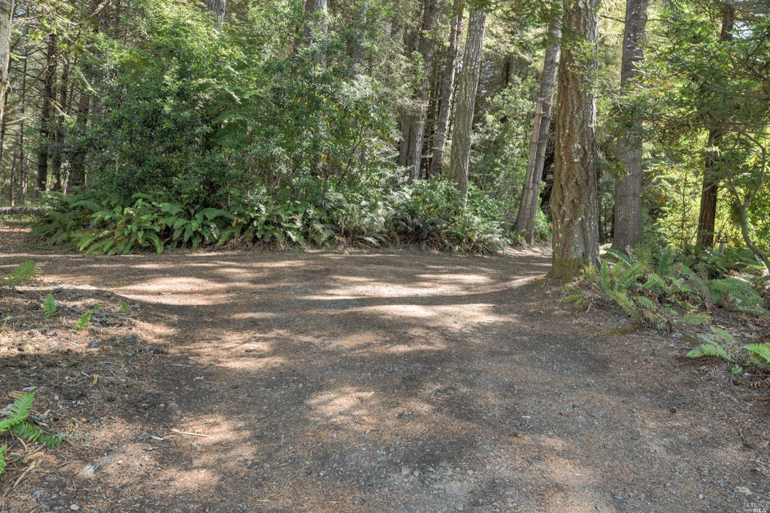 Listing 321089688 : 35300  Fly Cloud Road, The Sea Ranch, CA, 95497  (photo 38)