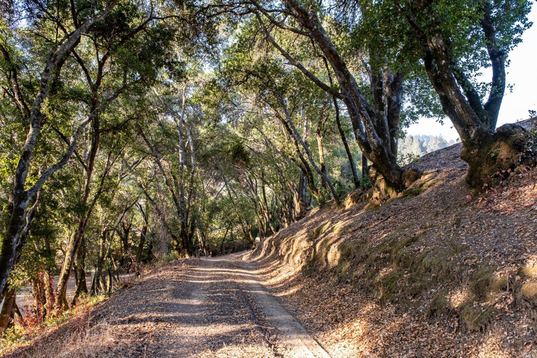 Listing 321089337 : 3875  W Dry Creek Road, Healdsburg, CA, 95448  (photo 52)