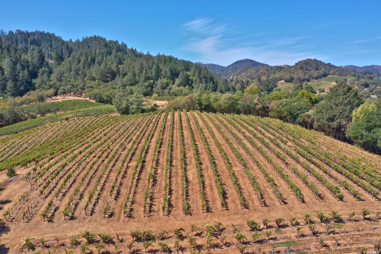 Listing 321089337 : 3875  W Dry Creek Road, Healdsburg, CA, 95448  (photo 53)