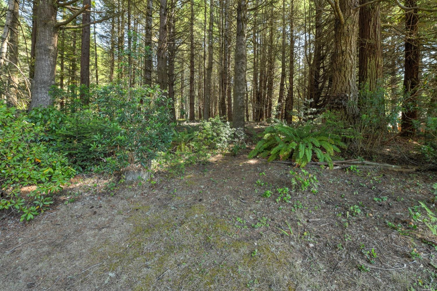 Listing 321089688 : 35300  Fly Cloud Road, The Sea Ranch, CA, 95497  (photo 36)