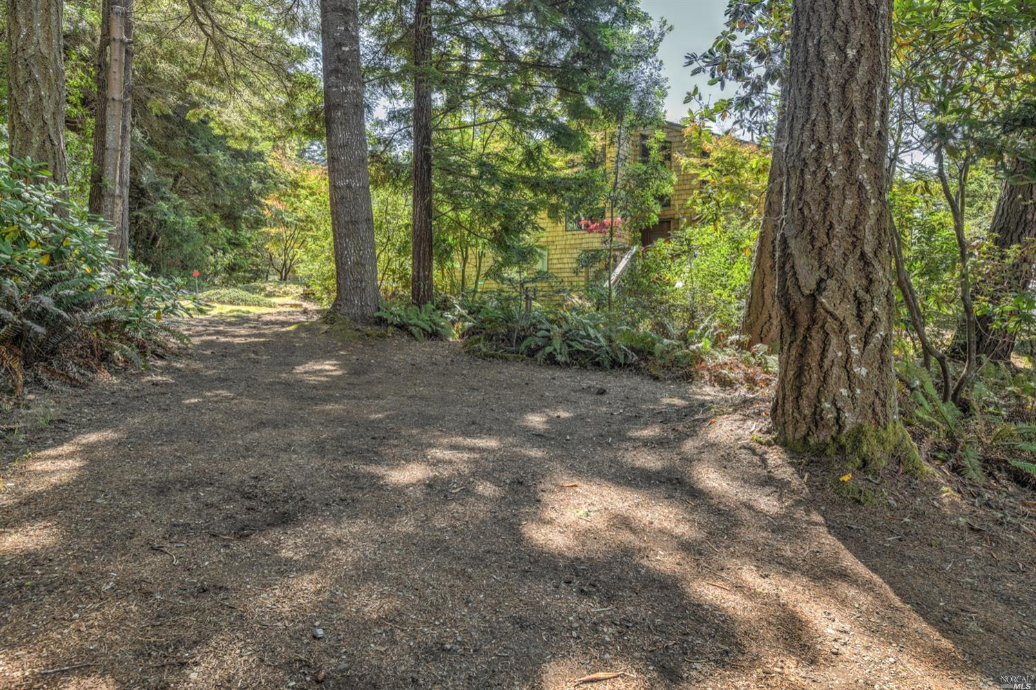 Listing 321089688 : 35300  Fly Cloud Road, The Sea Ranch, CA, 95497  (photo 39)